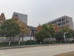 利辛县淝河路小学